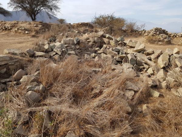 Detalle de las estructuras de la cima