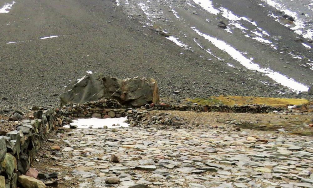 Gran Tambo Inca Yerba Loca